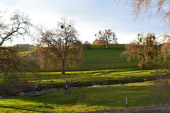 Landwirtschaftliches Land Lizenzfreie Stockfotografie