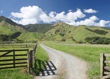 Landwirtschaftliches Neuseeland stockbilder