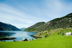 Landwirtschaftliches Norwegen Lizenzfreies Stockfoto