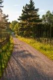 Landwirtschaftliches Schweden Lizenzfreie Stockfotografie