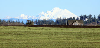 Landwirtschaftliches Tal mit großem Snowy-Berg Lizenzfreie Stockfotos