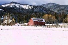 Landwirtschaftliches winterliches szenisches. Stockbild
