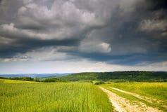 Landwirtschafts-Landschaft Stockfoto