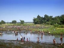 Landwirtschaftsarbeiten - Indien lizenzfreie stockfotos