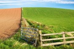 Landwirtschaftsfeld Lizenzfreies Stockfoto