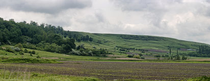 Landwirtschaftsfeld - Panorama Lizenzfreie Stockbilder