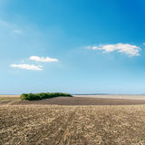 Landwirtschaftsfeld und blauer Himmel Stockfotos