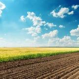 Landwirtschaftsfelder und blauer Himmel Stockfotografie