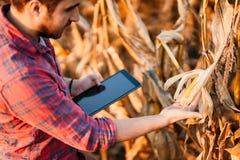 Landwirtschaftsindustrie - Leute, die Technologie in der Landwirtschaft einsetzen Details der Ernte stockbild