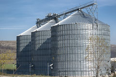 Landwirtschaftsweizensilos Stockfotografie