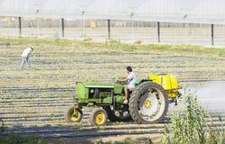 Landwirtsprühen isecticed auf einem Feld stockfotografie