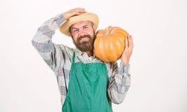 Landwirtstrohhut gro?en K?rbis tragen Landwirtschaft und Landwirtschaft Landwirtschaftssamen D?ngemittel und Ernte Mann b?rtig lizenzfreie stockfotografie