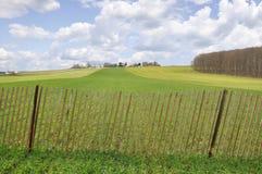 Landzaun Lizenzfreies Stockbild