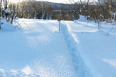 The Lane beaten a path in snow. The Beautiful texture of the snow. Royalty Free Stock Photos