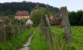 Lane in farm of Saxon village, Transylvania, Romania Royalty Free Stock Photos