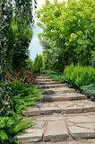Lane in the garden Royalty Free Stock Images