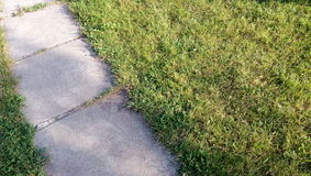 Lane in grass. A walkpath in green grass at the restouse Royalty Free Stock Images