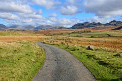 Lane Leading to Mountains Royalty Free Stock Photography