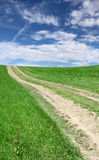 Lane in meadow and deep blue sky Stock Photo
