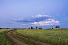Lane in meadow and deep blue sky. Great pink cloud. Nature design. Royalty Free Stock Photography
