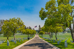 Lane in Military Cemetary Royalty Free Stock Photography