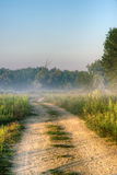Lane on the misty morning. Royalty Free Stock Photo