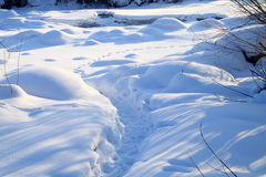 Lane in the snow field Stock Photography