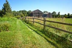 Lane to Barns Stock Image