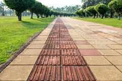 Lanes for the blind. The blind lanes in the city park Royalty Free Stock Photography