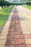 Lanes for the blind. The blind lanes in the city park Royalty Free Stock Photo