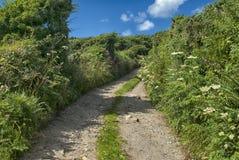 Laneway au cairn Euny, les Cornouailles photo libre de droits