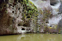 湖细节石灰岩地区常见的地形lanform的 免版税图库摄影
