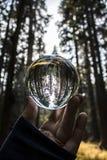 Lang die Forest Trees Captured in de Bezinning van de Glasbal in Fing wordt gehouden stock fotografie