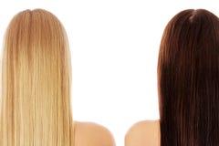 Lang haar hairstyle Schoonheidsvrouw met Lang Gezond en Glanzend Vlot Zwart Haar Vrouw met gezond haar stock afbeeldingen