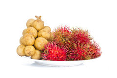 Lang sat or Long kong&Rambutan isolated on white background. Fruit in Thailand Stock Image