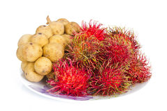 Lang sat or Long kong&Rambutan isolated on white background. Fruit in Thailand Royalty Free Stock Photos