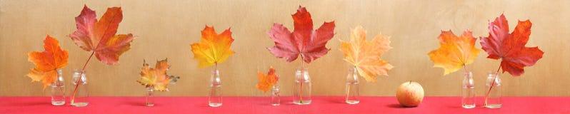 Lang stilleven met kleurrijke esdoornbladeren en app Stock Foto's