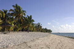 Lang strand Stock Afbeelding