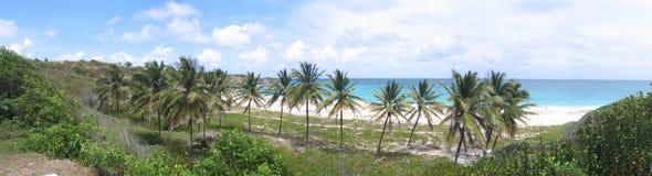 Lang strand, Barbados Royalty-vrije Stock Foto