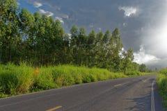 Lang weglandschap na de regen royalty-vrije stock fotografie
