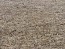 Langa golvet i stads- stadsområde Royaltyfri Foto