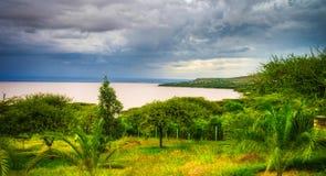 Langano湖海岸线, Oromia,埃塞俄比亚风景  库存图片