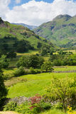 Langdale Valley Lake District Cumbria with mountains and blue sky. Langdale Valley Lake District Cumbria with mountains blue sky and clouds on beautiful summer Royalty Free Stock Images