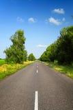 Lange Asphaltstraße mit grünen Bäumen lizenzfreie stockfotografie