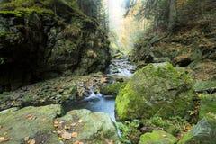 Lange Belichtung des Herbstflusses stockbild