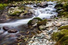 Lange Belichtung des Stromes in Tollymore Forest Park lizenzfreie stockfotos