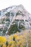 Lange bergpiek over de herfst gele bladeren stock afbeelding