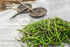 Lange Bohnen des organischen Yard am asiatischen Markt Stockbilder