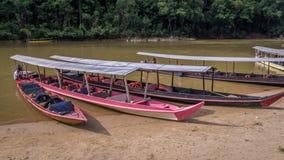 Lange Boote im Regenwald in Taman Negara, Malaysia lizenzfreies stockfoto