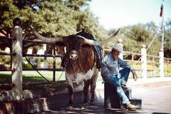 Lange buffelshoorn met cowboy Stock Fotografie